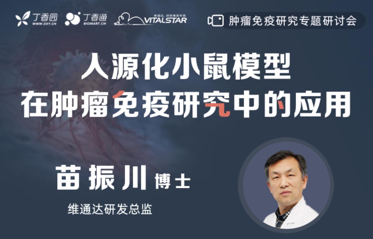 人源化小shu在zhong瘤免疫yan究中的应用
